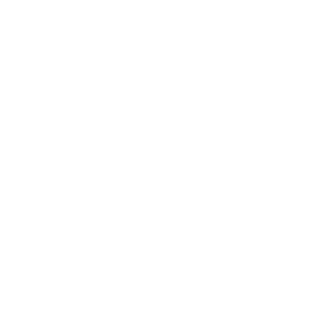 Afro Nation logo